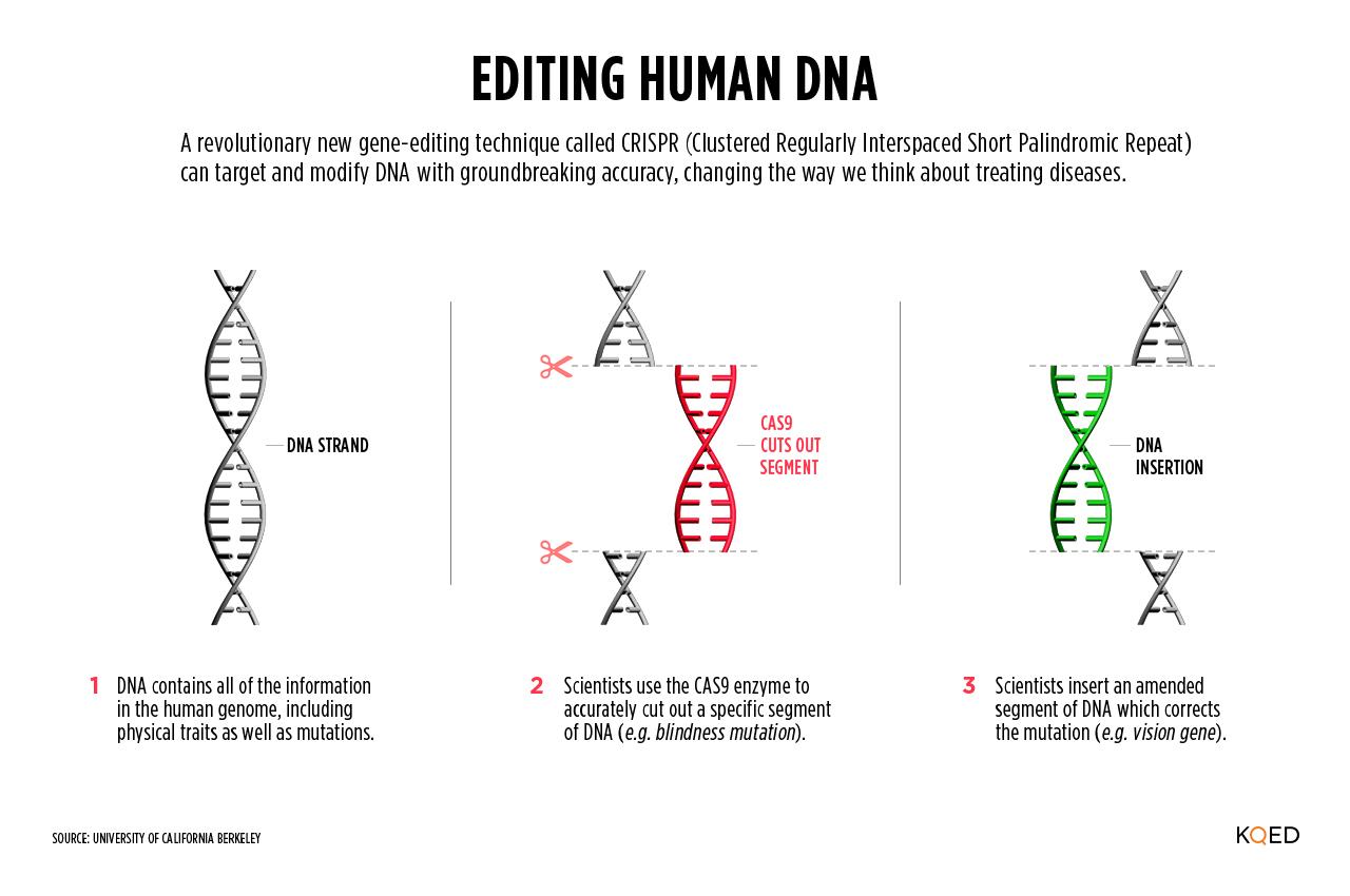 CRISPR is Here