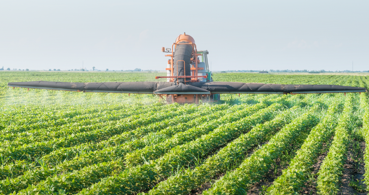 The U.S. Department of Agriculture said in a 2014 bulletin that in 2008, corn, soybeans, cotton, wheat, and potatoes accounted for about 80 percent of the pesticide use. The USDA examined pesticides use on 21 major crops.