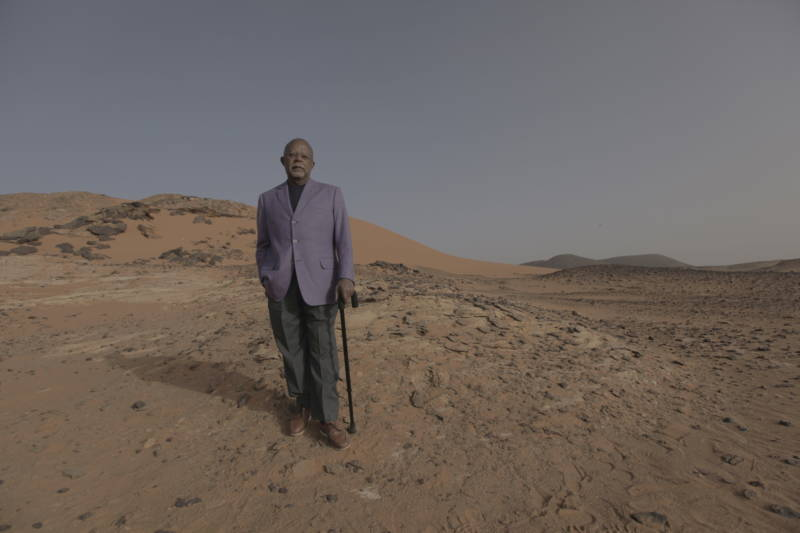 Henry Louis Gates, Jr. gazes out towards the ruins of the ancient city of Meroë in Sudan.