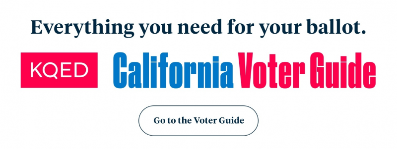 CA voter guide image
