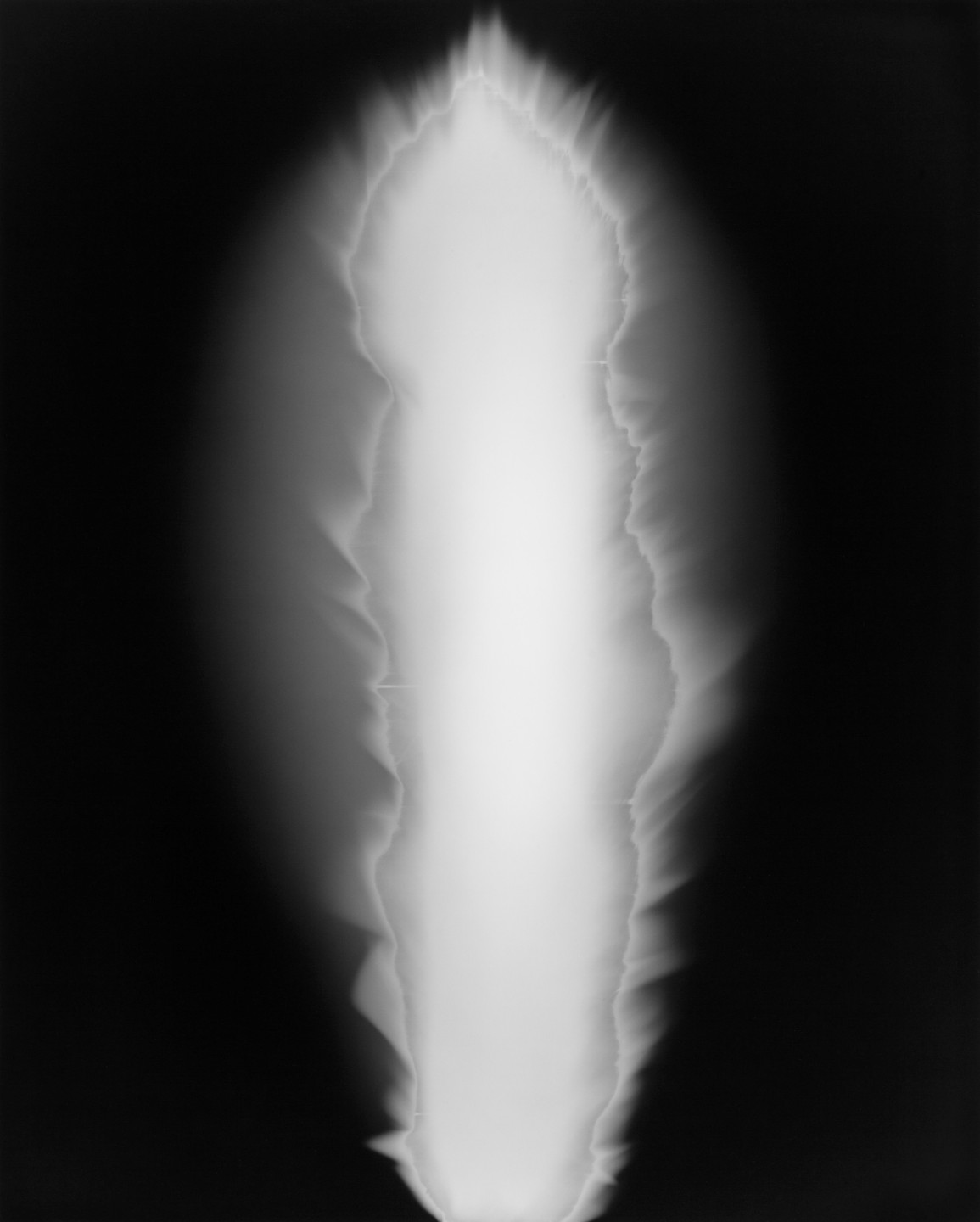 Hiroshi Sugimoto, In Praise of Shadows, 1998; courtesy of Fraenkel Gallery