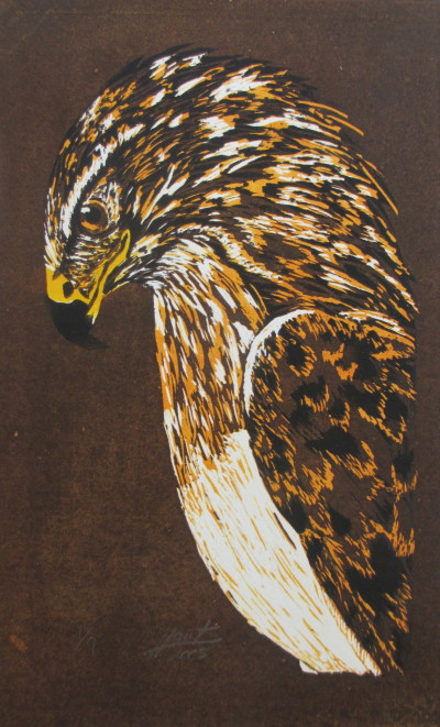 Henry Edward Frank, Hawk, 2009; courtesy William James Association.