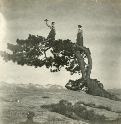 Photographer unknown, Two Women atop Jeffrey Pine on Sentinel Dome, undated; courtesy California Historical Society.