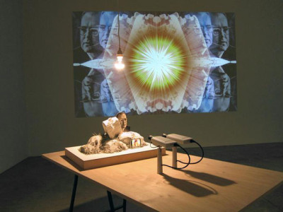 Jennifer and Kevin McCoy, <i>Priest of the Temple</i>, 2012; Courtesy of the artists and Johansson Gallery