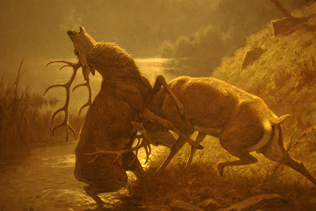 Fighting Stags by Moonlight by George Frederic Rotig, 1900