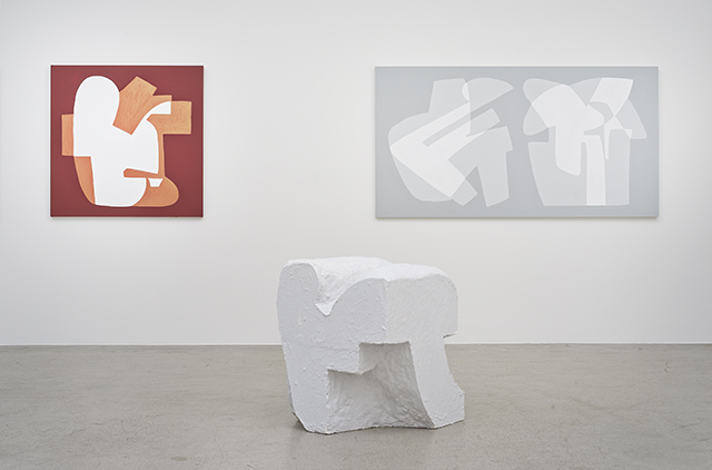 Hayal Pozanti, Installation view of Ciphers, 2015. (Courtesy of Jessica Silverman Gallery)