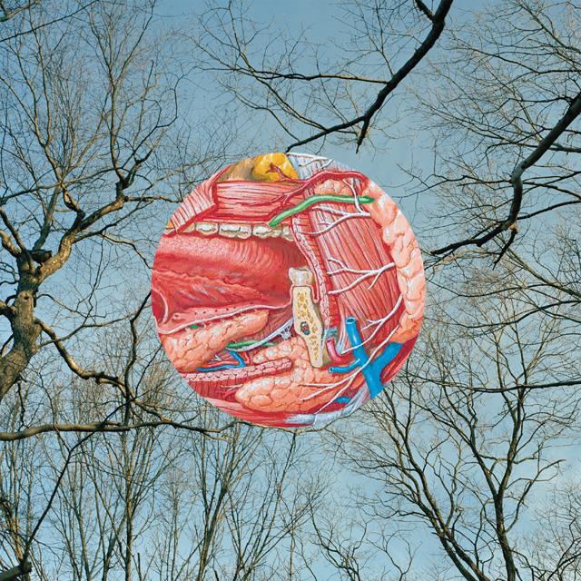 Glean album cover art.
