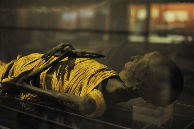 Mummy in the Rosicrucian Egyptian Museum. (Photo by Adrienne Blaine)