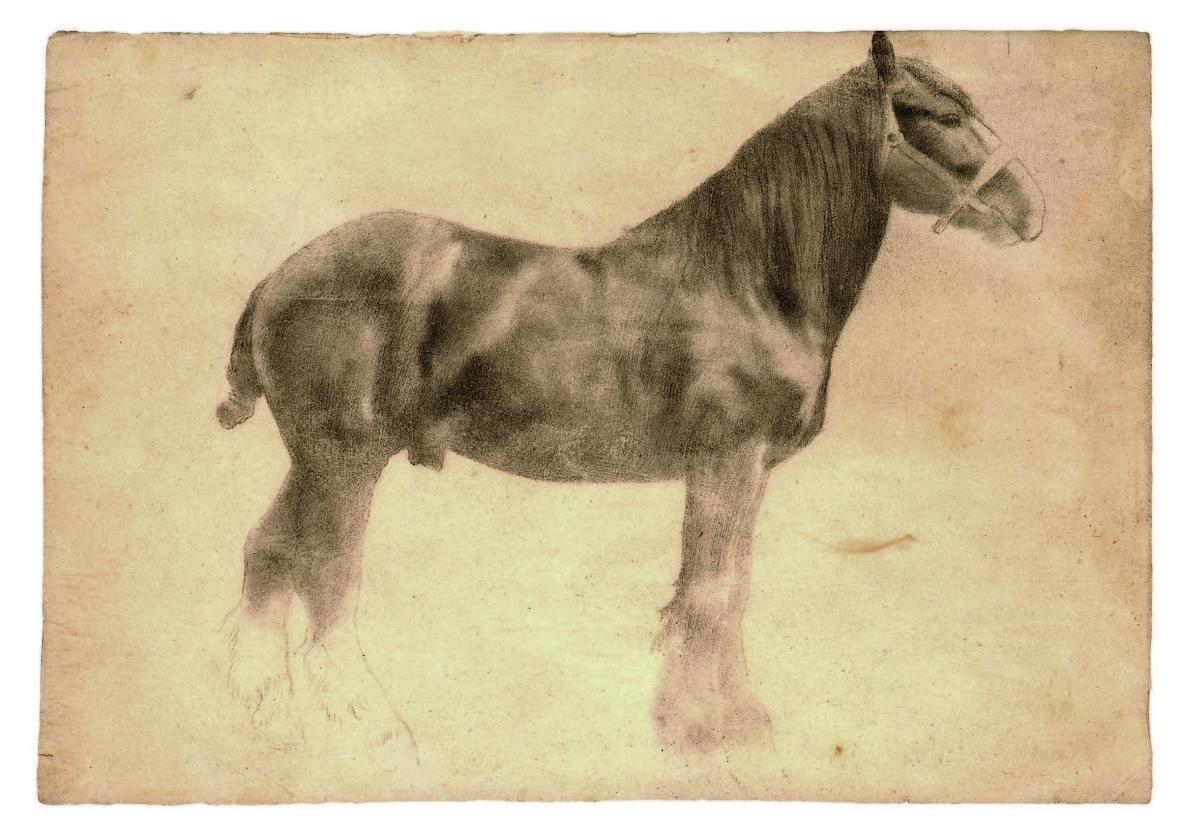 Edgar Degas, 'Plough Horse.' (Courtesy of the Petaluma Arts Center)