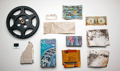 A People's Archive of Sinking and Melting, 'New York Collection,' collected Nov. 5, 2012. (Photo: Amy Balkin)