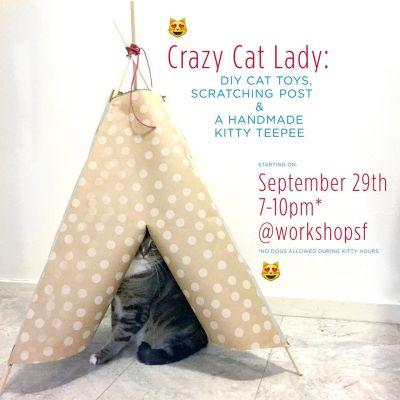 Flyer for 'Crazy Cat Lady' workshop