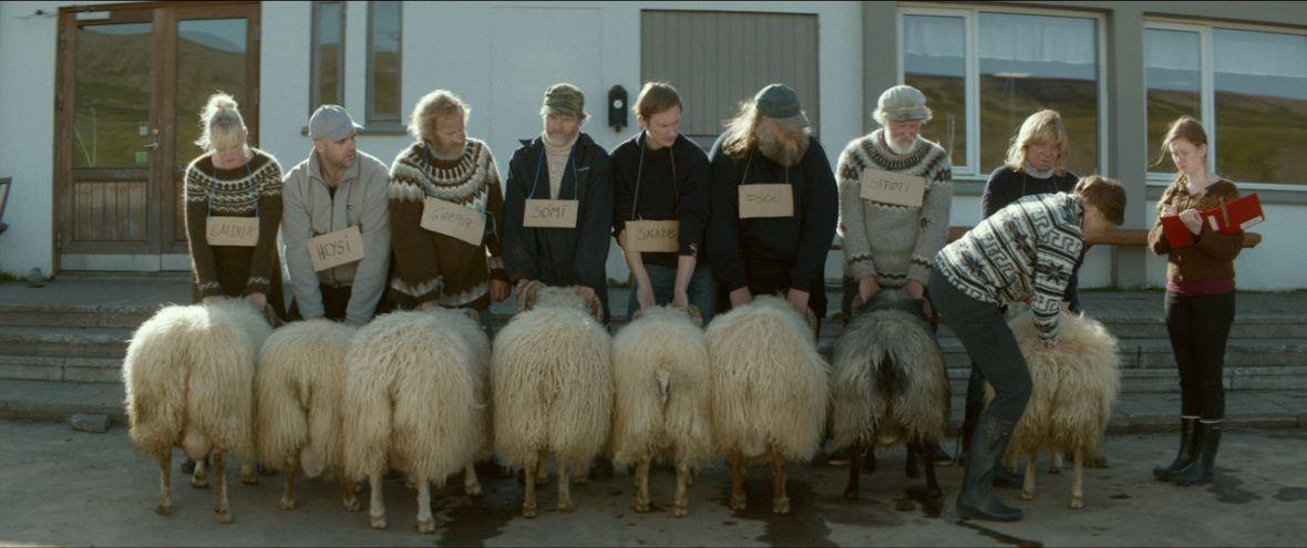 Still from 'Rams.' (Photo: Cohen Media Group/Mill Valley Film Festival)