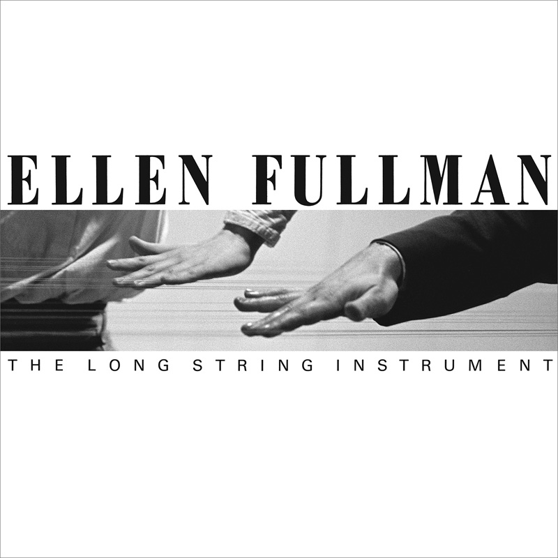 Ellen Fullman, 'The Long String Instrument.'