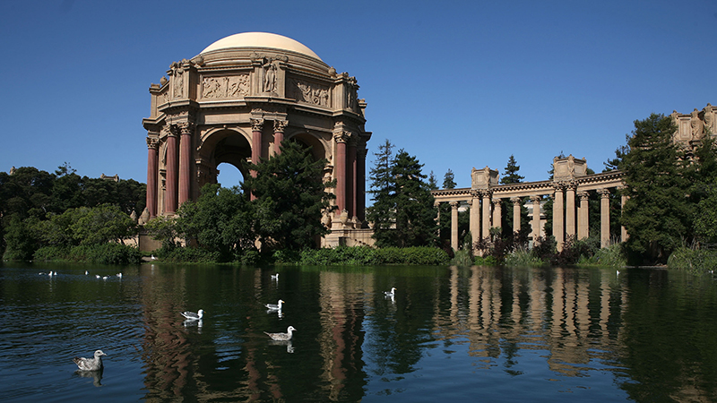 Birds swim near the Palace of Fine Arts rotunda