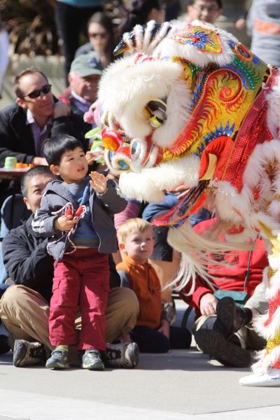 A toddler can't help but reach out to check out this lion at a recent Redwood City's Lunar New Year Celebration.