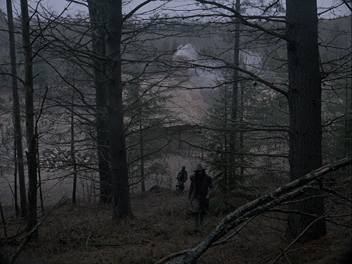 Hemlock and pine tress in The Witch; Courtesy A24 Films.