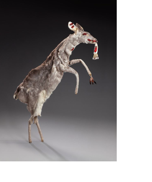 Hupa deer slated for sale May 30 in Paris