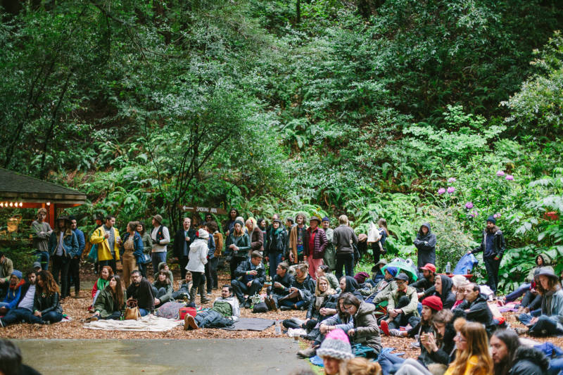 The crowd on May 7, 2016, at Dungen's show in the redwoods.