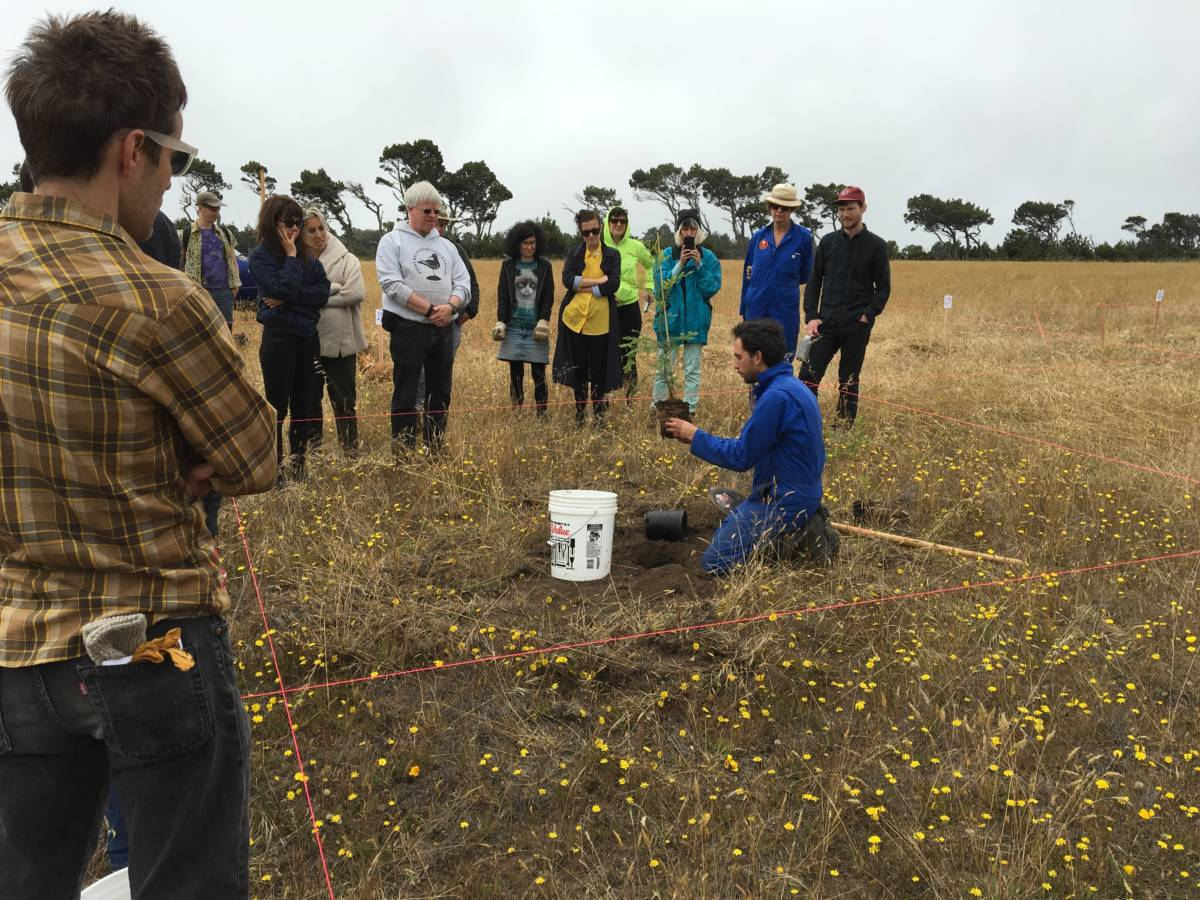 WWWester Ben Lotan demonstrates how to plant a redwood in the Encoded Forest.