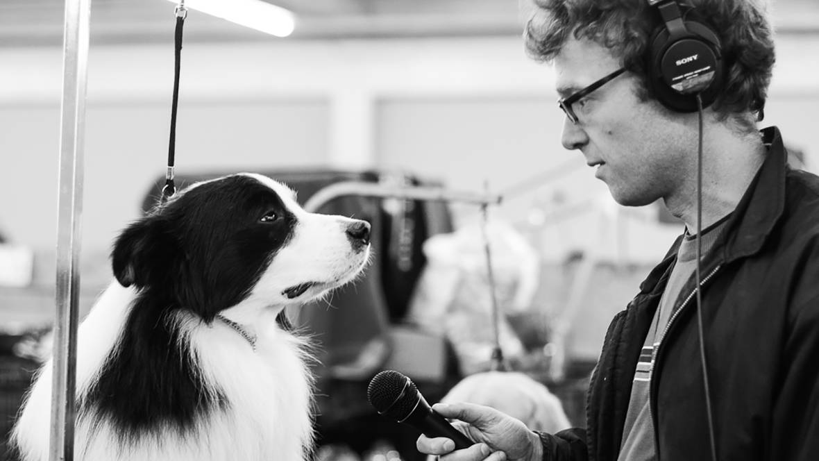 The World According to Sound's Chris Hoff interviewing a dog Photo: Alyssa Kapnik Samuel