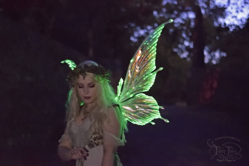 A model wears the Flora Light Up Fairy Wings designed by Angela Jarman. Photo and wing lighting by Jordan Price.
