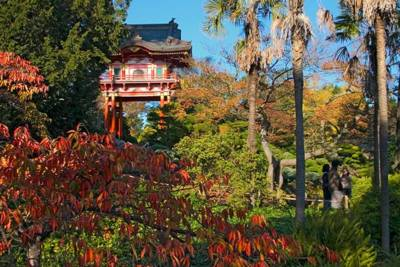 Japanese Tea Garden Temple Gate