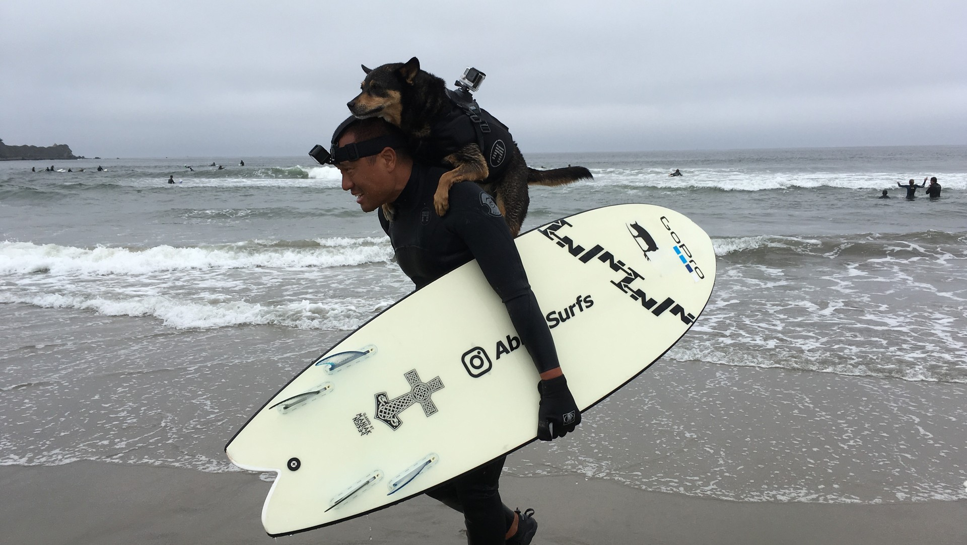 Abbie Girl rides triumphant on her human, Michael, at the first-ever Northern California dog surfing championships in Pacifica on September 10, 2016.