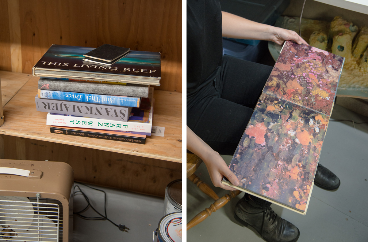 Reference books and research in Lempesis' studio; A spread in 'This Living Reef.'