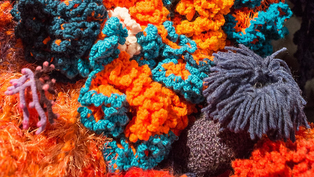 Detail of The Crochet Coral Reef, on view the Mary Porter Sesnon Art Gallery at UC Santa Cruz. The Crochet Coral Reef is a massive collection of individual works of art: corals, anemones, kelps, sponges, nudibranchs, flatworms and slugs, crocheted not just from yarn and thread, but from plastic bags, ties, can flip tops, videotape, ribbon, and tinsel.