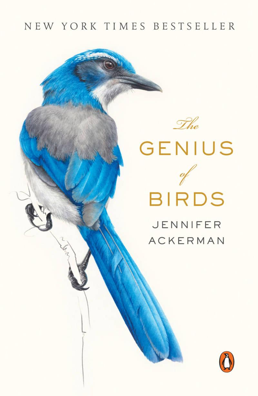 'The Genius of Birds' by Jennifer Ackerman