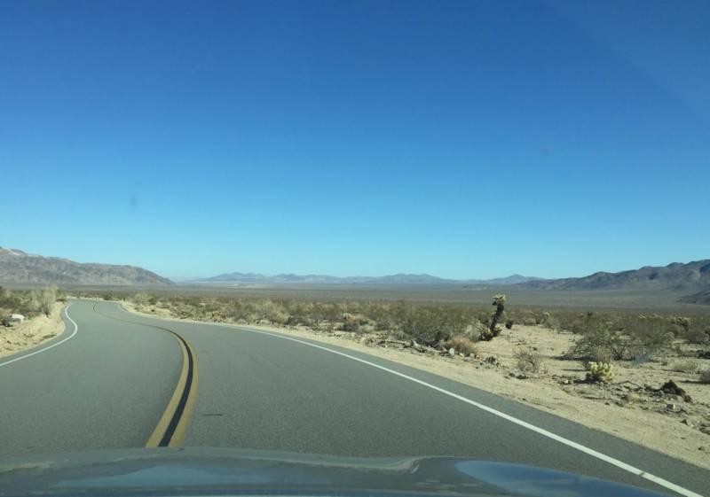 Driving through Joshua Tree National Park.