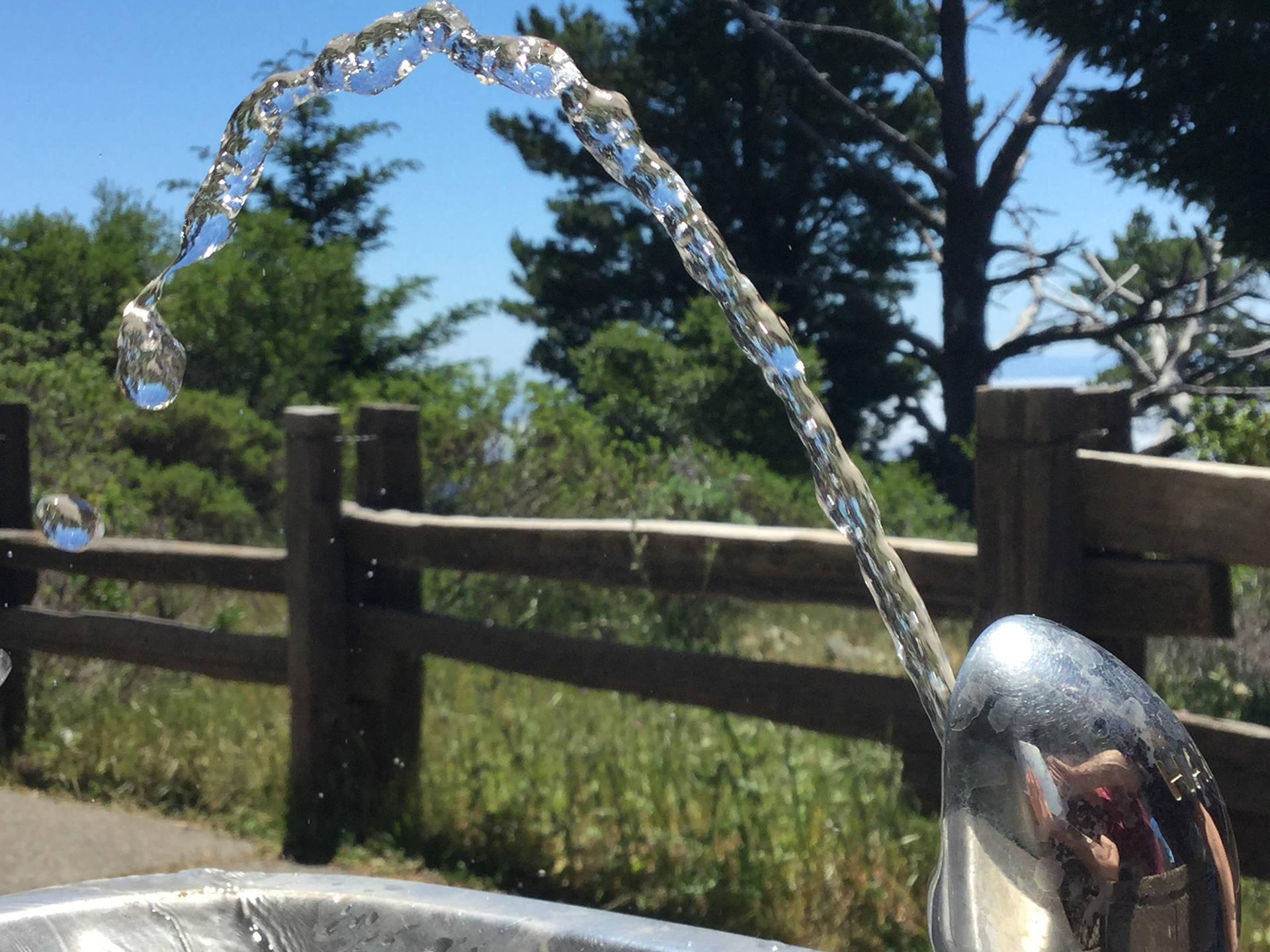 Water Fountain at Mt. Tamalpais Photo: Jonathan Hunt