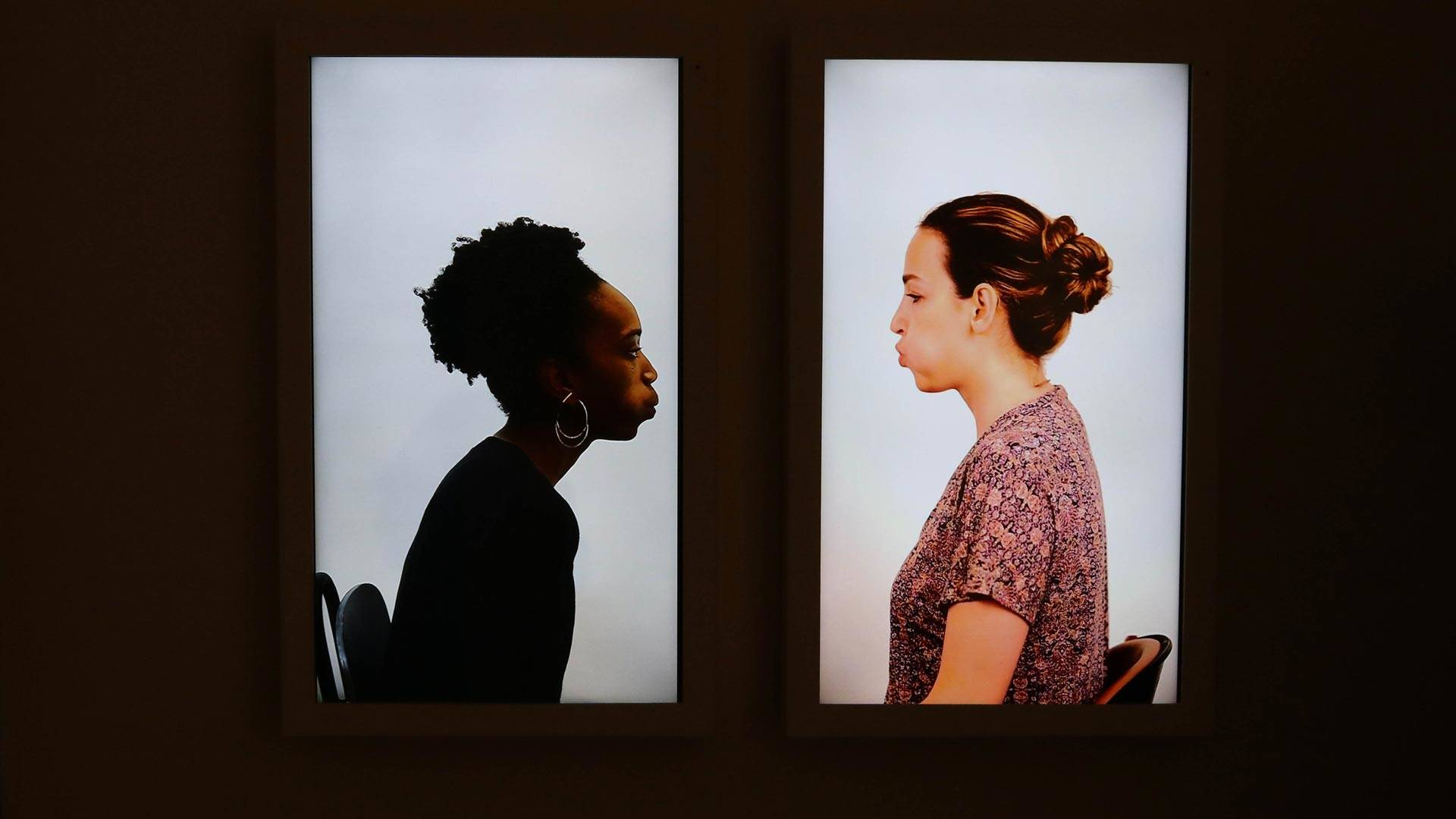 'Although the Wind,' a video installation by Shirin Abedinirad and Dionne Lee that opens 'Eleven and a Half Hours' at Aggregate Space Gallery.