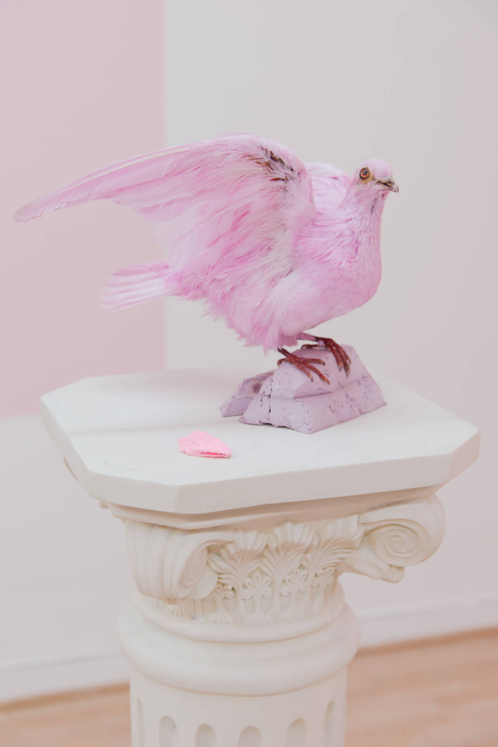 Sofía Córdova, 'Dame la mano paloma, para subira tu nido (Give me your hand, dove, so that I may climb into your nest),' 2017.