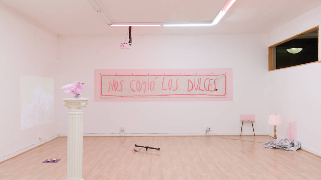 Installation view of Sofía Córdova's 'The Gentle Voice That Talks To You Won't Talk Forever.'