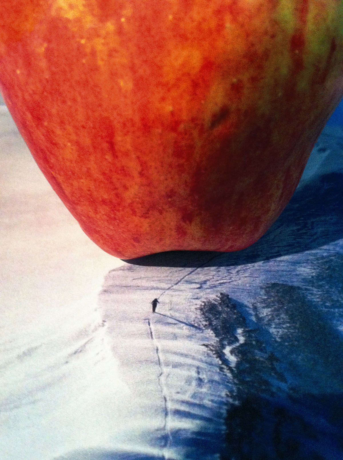 Nina Katchadourian, 'Mountain Climbers (Apple),' 2011. From 'Seat Assignment,' 2010-ongoing.