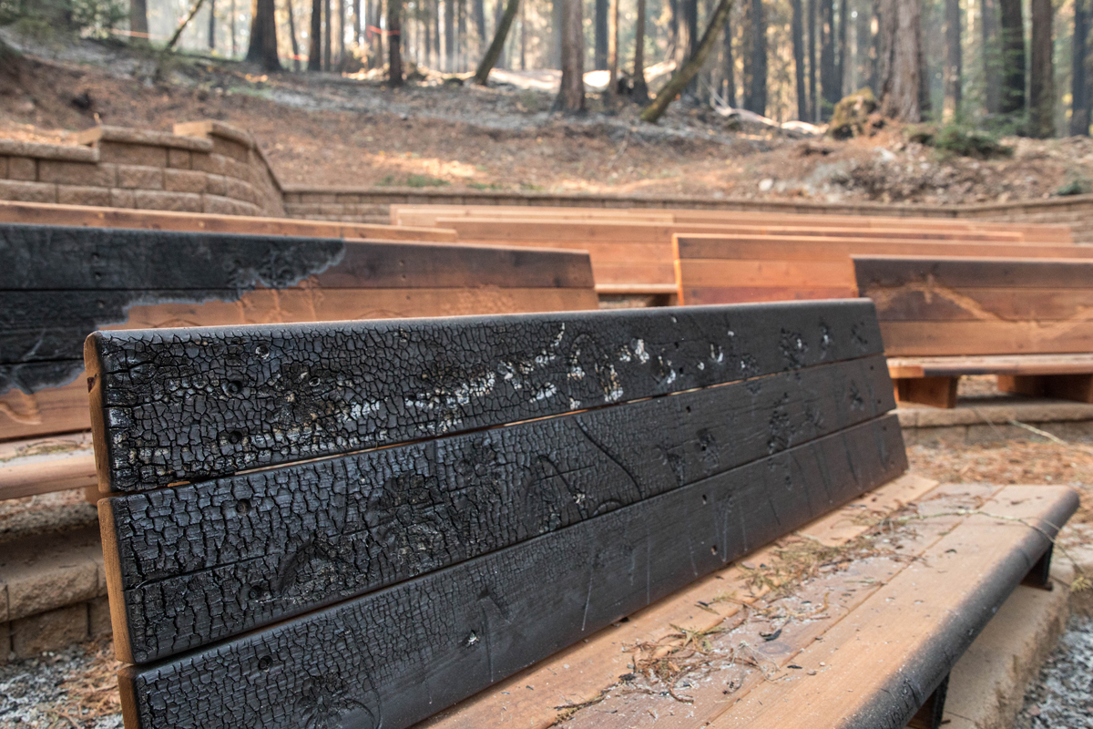 The charred edges of hand-carved benches at Redwood Grove theater, which was finished this summer after a multi-year fundraising campaign.