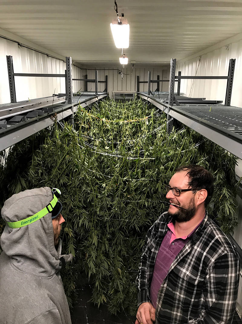 Pietrangeli (right) and grower Chris Leenhouts worked around the clock transferring their harvest to containers at Harborside's farm in the Salinas Valley.