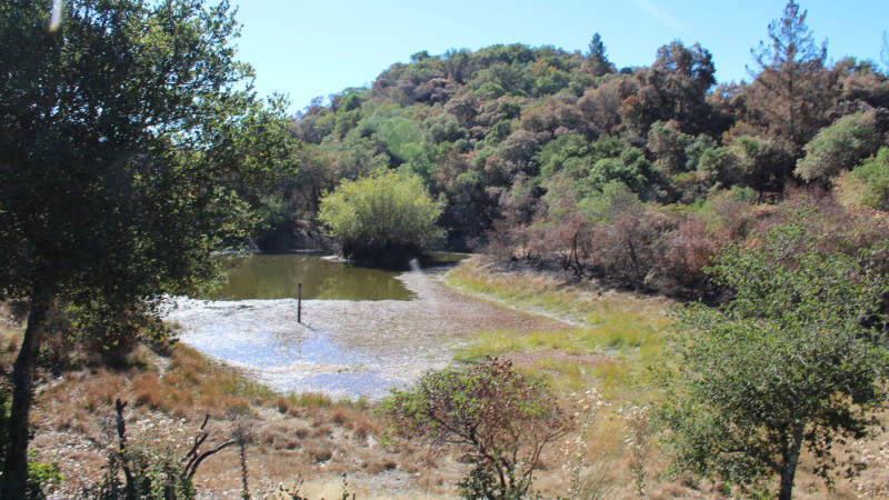 The pond in the old pumice quarry at Rainey's property.