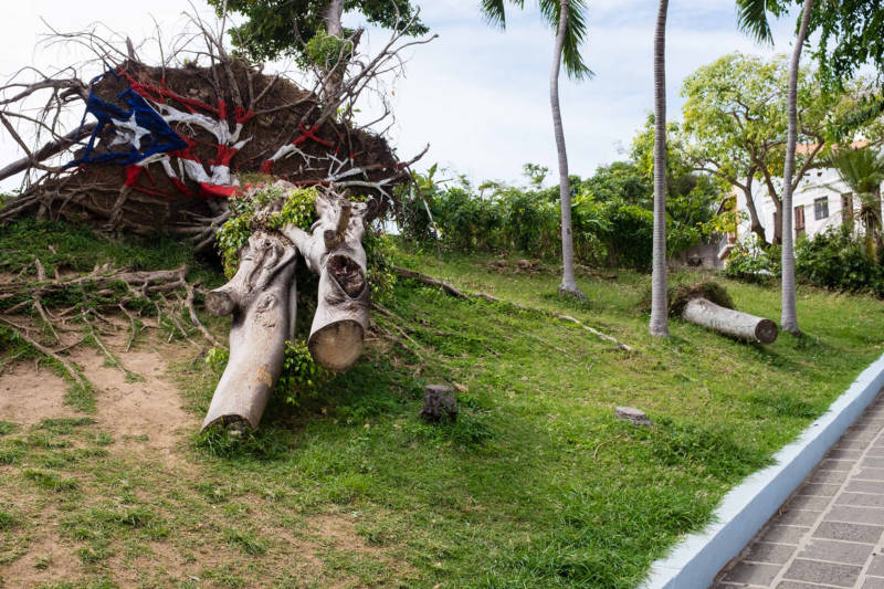 ): A toppled tree in Old San Juan that's been painted with the Puerto Rican flag. Signs of storm damage are evident across the island, including the island's capital.