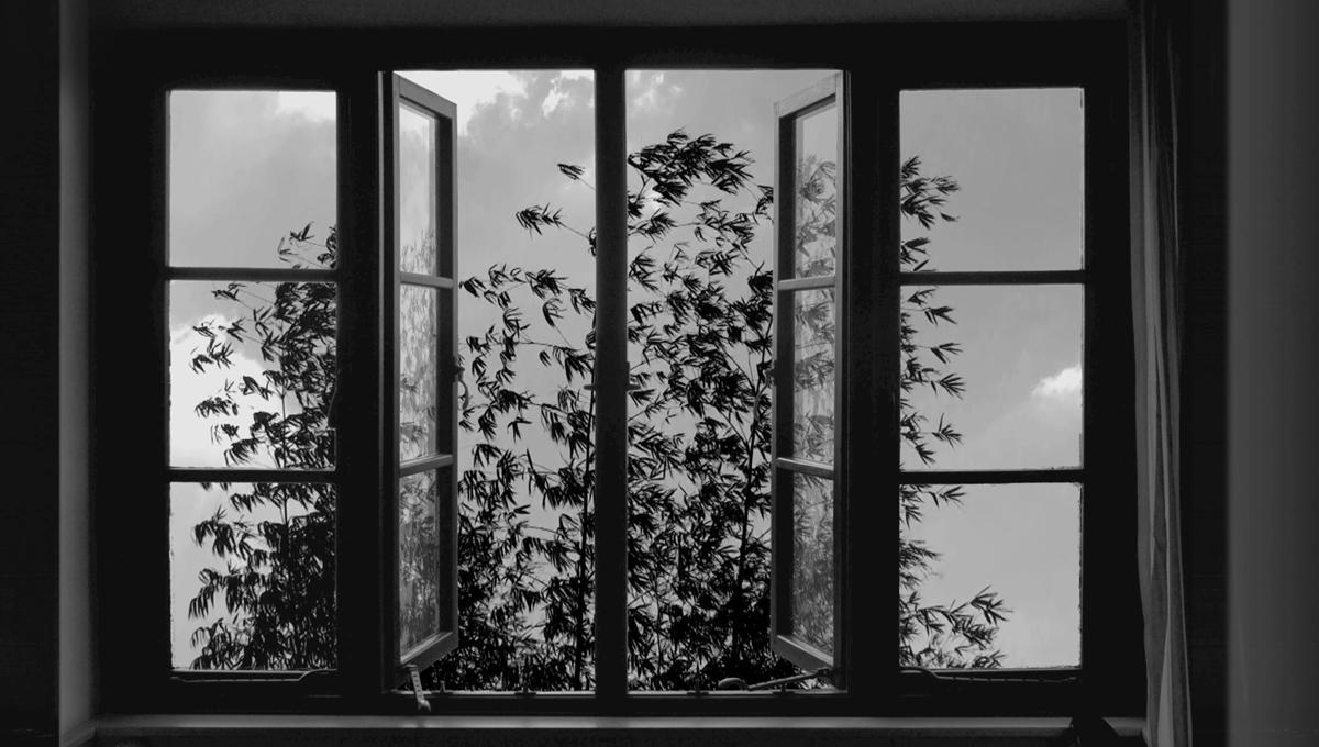 Still from Abbas Kiarostami's '24 Frames,' 2017.