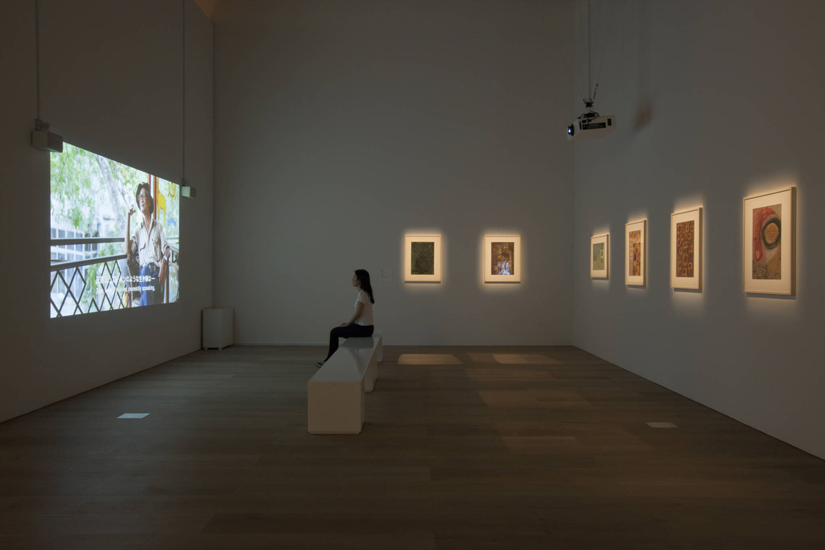 Dinh Q. Lê, Installation view of 'Vision in Darkness: Tran Trung Tin,' 2015.