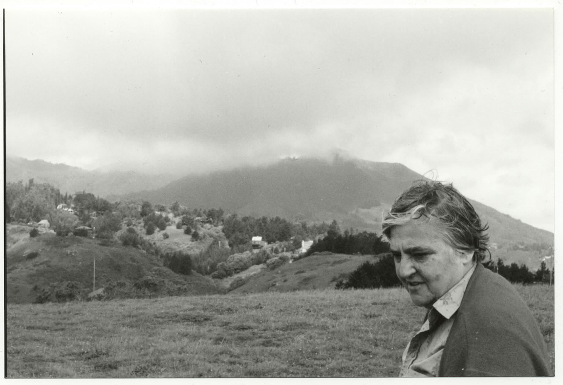 Etel Adnan on Mount Tamalpais, California.