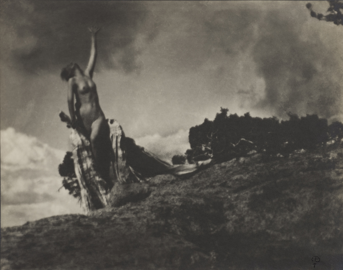 Anne Brigman, 'Soul of the Blasted Pine,' negative made 1906.