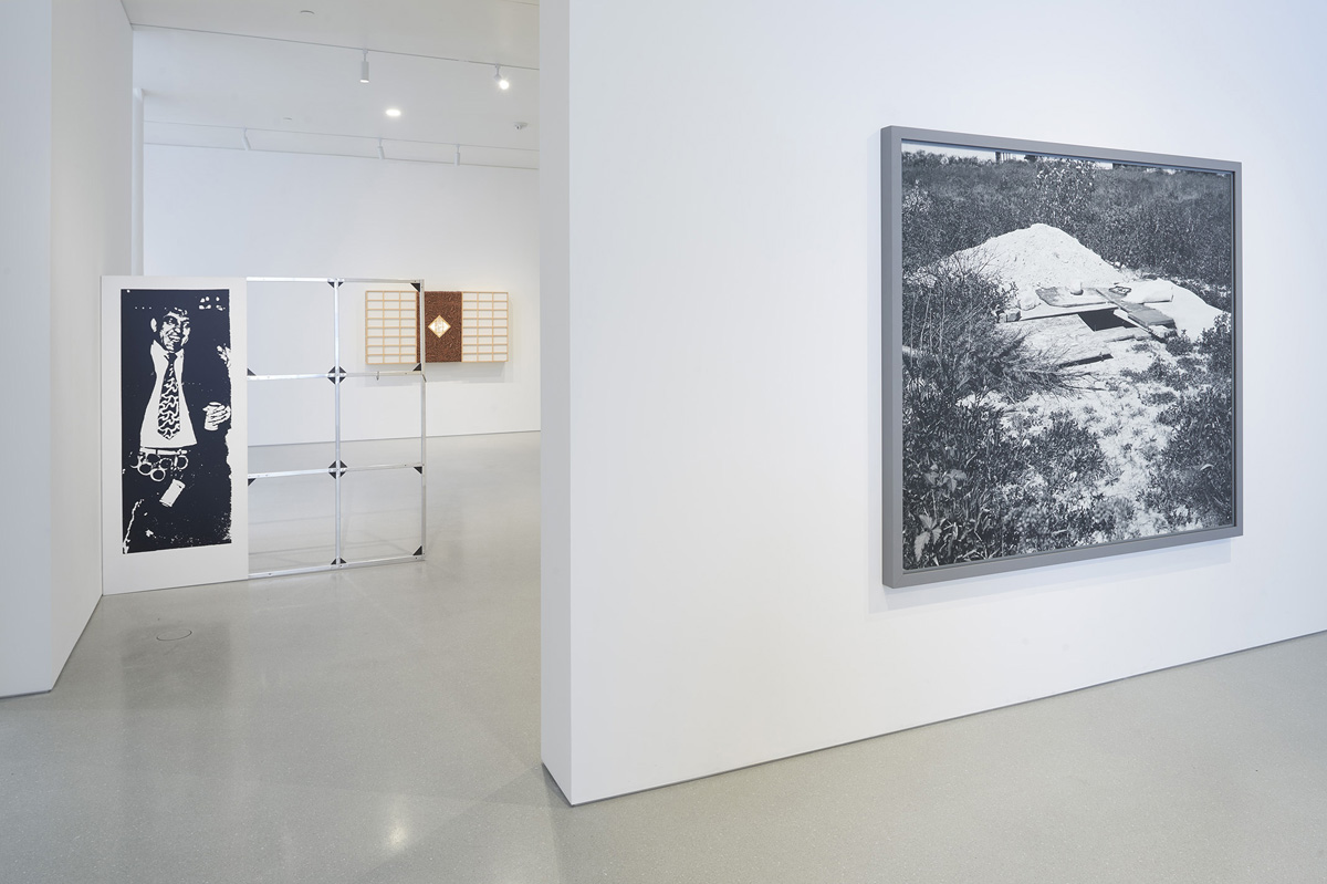 Installation view of 'Laws of Motion,' with work by Cady Noland, Anicka Yi, and Jeff Wall.