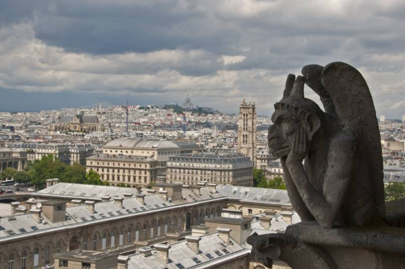 A gargoyle of the Notre Dame Cathedral is seen on July 8, 2014 in Paris.