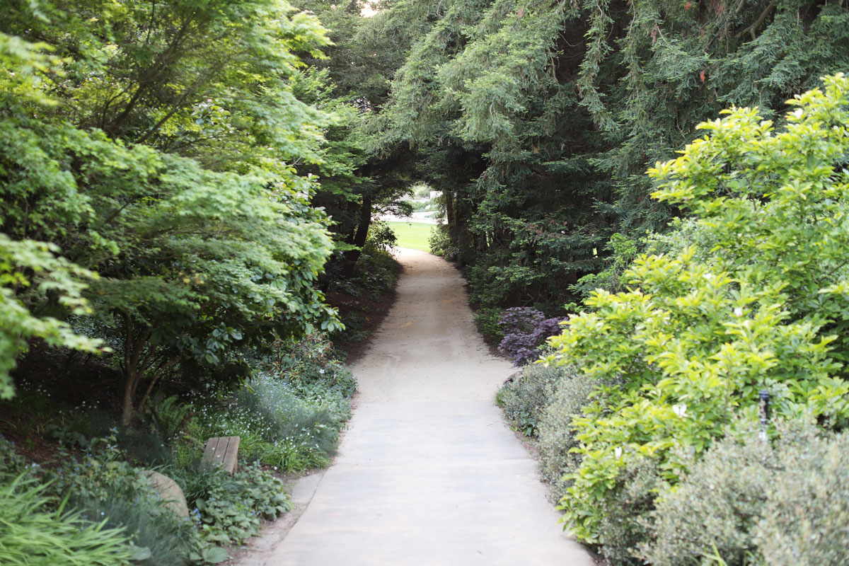 A path into the AIDS Memorial Grove.