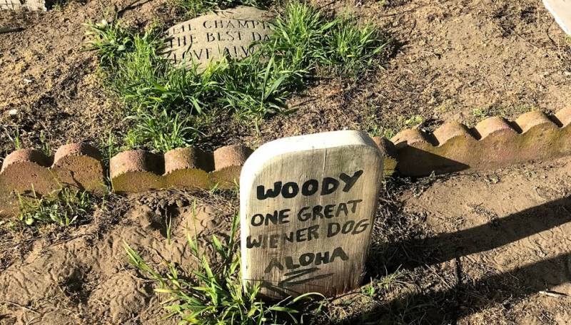 Woody the wiener dog's grave site in the Presidio pet cemetery.