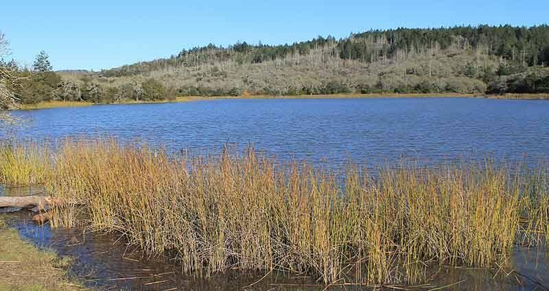Lake Ilsanjo at Annadel State Park.