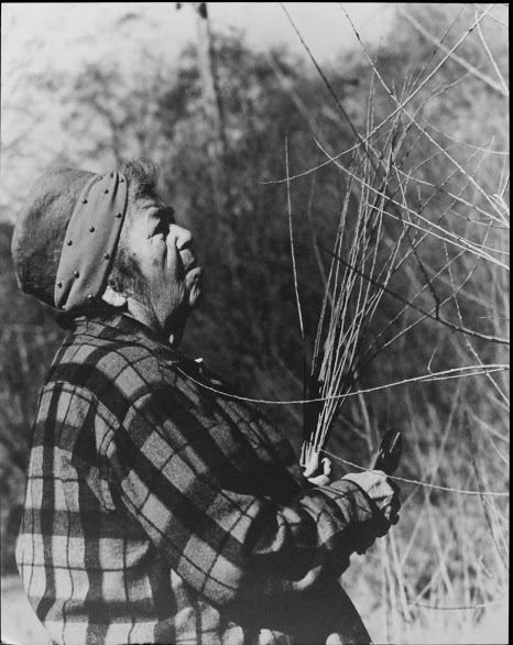 Elsie Allen cutting willow at Warm Springs Dam site, Sonoma County, 1980.